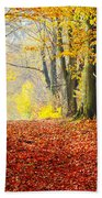 Path Of Red Leaves Towards Light In Fall Forest Beach Towel