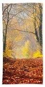 Path Of Red Leaves Towards Light Beach Towel