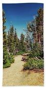Path On Top Of Mt. Howard, Wallowa Or Beach Towel