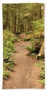 Path Through Mossy Forest Beach Towel