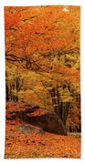 Path Through New England Fall Foliage Beach Towel