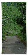 Path To Adventure Beach Towel