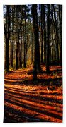 Path To Serenity - Nickerson State Park Beach Towel