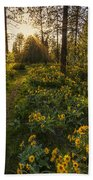 Path To The Golden Light Beach Towel