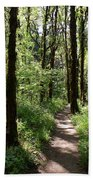 Pathway Through The Woods Beach Towel