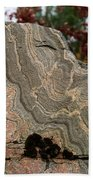 Pattern In A Gneiss Rock Beach Towel