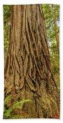 Patterned Redwood Beach Towel
