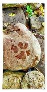 Paws On The Rocks Beach Towel