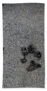 Paws Beach Towel