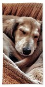 Peace At Last #saluki Beach Towel