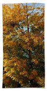 Peaceful Country Road Beach Towel