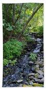 Peaceful Flowing Creek Beach Towel