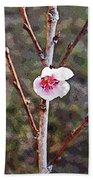 Peach Blossom Beach Sheet