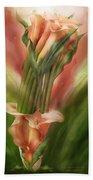Peach Calla Lilies In Calla Vase Beach Towel