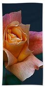 Peach Rose Bud Beach Towel