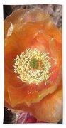 Peachy Opuntia Flower Beach Sheet
