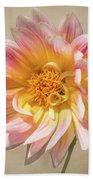 Peachy Pink Dahlia Close-up Beach Towel
