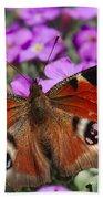 Peacock Butterfly Beach Sheet