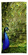 Peacock At Frankenmuth Michigan Beach Towel