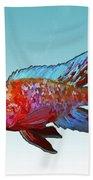 Peacock Cichlid Beach Towel
