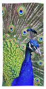 Peacock Colors Beach Towel