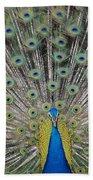 Peacock Display Beach Towel
