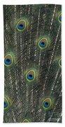 Peacock Feathers Beach Towel