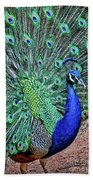 Peacock In A Oak Glen Autumn 2 Beach Towel