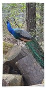 Peacock On Woodpile Beach Towel