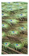 Peacock Tail Feathers  Beach Towel