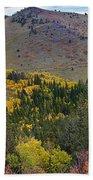 Peak To Peak Highway Boulder County Colorado Autumn View Beach Towel
