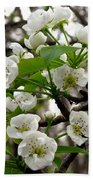 Pear Tree Blossoms 2 Beach Towel