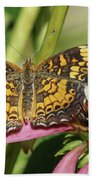 Pearl Crescent Butterfly On Coneflower Beach Towel
