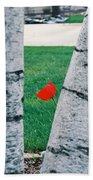 Peeking Tulip Beach Towel