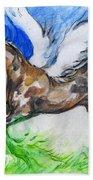 Pegasus Beach Towel