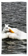 Pekin Ducks Beach Towel
