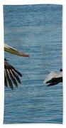 Pelican Duo Beach Towel