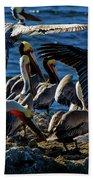 Pelican Fiesta Beach Towel