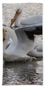 Pelican Having Supper Beach Towel