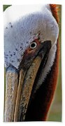 Pelican Head Beach Towel