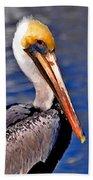 Pelican Head Shot Beach Towel