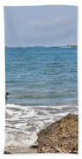 Pelican In The Water Beach Towel