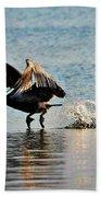 Pelican Landing Beach Towel