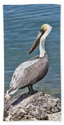 Pelican On Rock Beach Towel