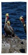 Pelicanos Beach Towel