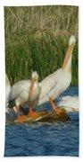 Pelicans Being Pelicans Beach Towel