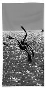 Pelicans Flying By - Black And White Beach Towel