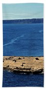 Peninsula De Valdez Beach Towel