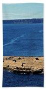 Peninsula De Valdez Beach Towel