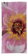 Peonie In Pink Beach Towel